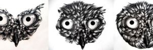 Owl Drawing (9th Grade): WIP Process by icee-bleu