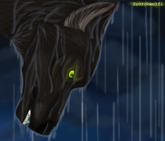Stand in the Rain by ScorchWolf1