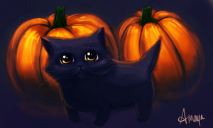 Pumpkin Kitten by xtwistedxamayax