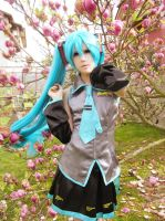 Hatsune in blossoms by Takaika