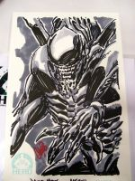 ALIEN by stalk