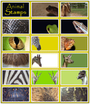Mixed Animal- Stamp- Stock by Rainny-Stock
