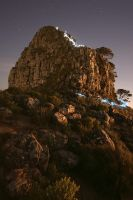 Descending Lion's Head by prperold