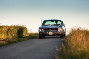 68 Mustang Coupe IV by AmericanMuscle