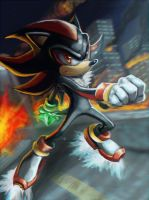 Shadow the Hedgehog by Will2Link