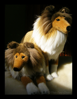 Kosen Collie Plush Pair by The-Toy-Chest