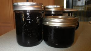 Blackberry Jelly by Bwabbit