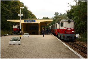 Budapest Children's Railway by shenanigan87