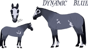 Dynamic Blue Ref - Sold by Cerulean-Sky-Stables