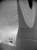 Toilet Paper by Kiw-wi