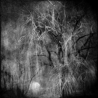 Swamp Thing by intao