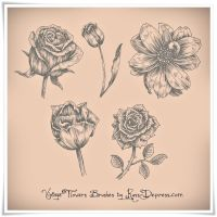 Vintage Flowers High Res Photoshop Brushes by RussDepress