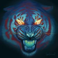Tiger by MorranArt