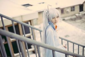 Weiss 2 by ClaudiaQH