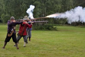 Cannock Chase Military History Weekend 2015 (35) by masimage