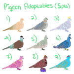 Pigeon Adoptables #2 by Alex-MewMew