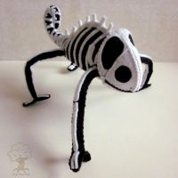 Skeleton chameleon 3 by quirkandbramble