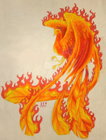 Phoenix fire by Usei