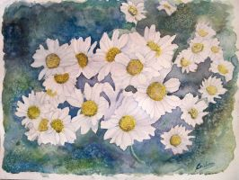 White flowers by cristineny