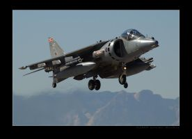 RAF Harrier 2 by jdmimages