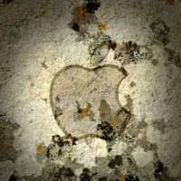 iPad Apple Wallpaper Moss by thekingofthevikings