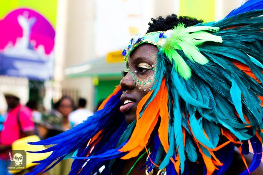 Caribbean parade toronto by andreacaliendi