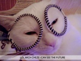 LOL. Cat by KungfuHamster