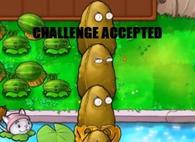 CHALLENGE ACCEPTED by NarutoDude96