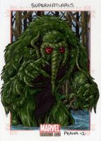 Man-Thing - Marvel Bronze Age by tonyperna