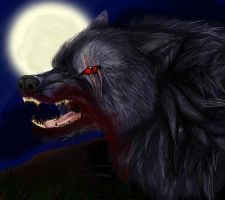 Werewolf by Elzux