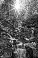 The Sun Over the Stream BW by mjohanson
