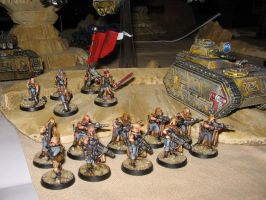 Company Command and Veteran Squad of Vokes Nomads by Master-of-Onion