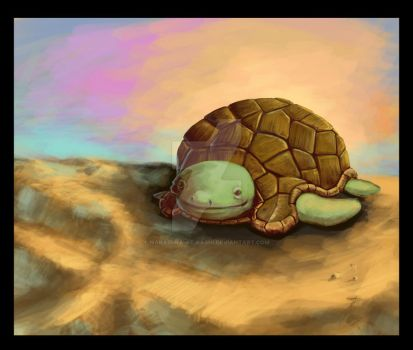 Turtle by Narasura-of-Kashi