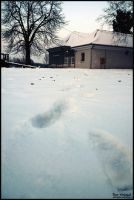 Footsteps in the snow by Ph1at1ine