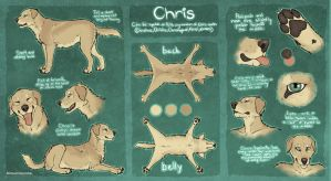 Chris Ref by HereLiesDeadSquirrel
