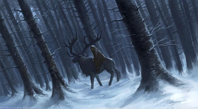 In the snowy forest by sashulka