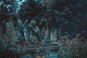 Cemetery angel by dammmmit