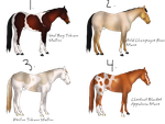 Horse Set 1 by xBrentwood-Kennelsx