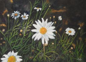 Chamomile by aakritiarts