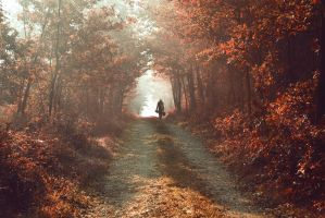 Into the autumn by joiedevivre89
