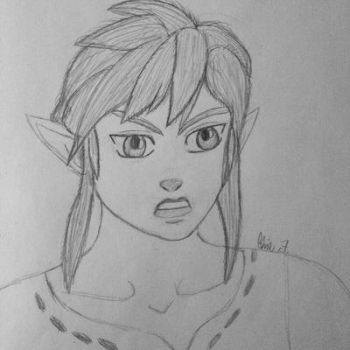 BotW Link! by LOZRocksmysocks77