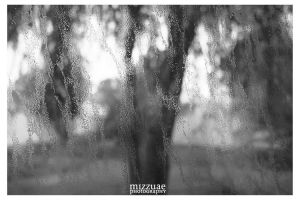 Sand and Rain.. by mizzuae