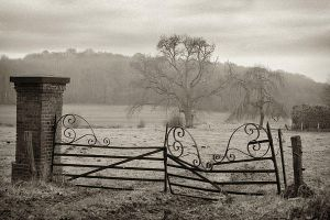 Old Fence by madvax