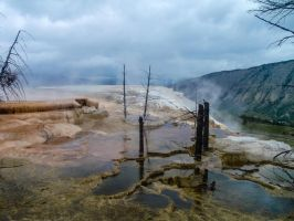 Yellowstone VII by adanielescu