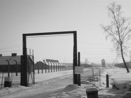 auschwitz by smallone1989