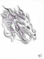 Dragon tattoo by tiffawolf
