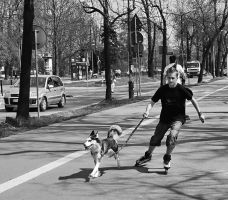 Riding the dog II by starykocur