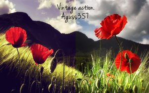 Action | Vintage Action | Own by AgustinHernan