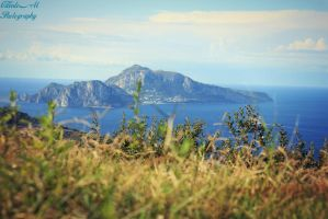 capri by AVENGED7X