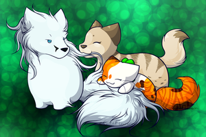 Could you guys not by FlareAKACuteFlareon